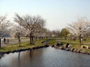 雄物川河川公園②