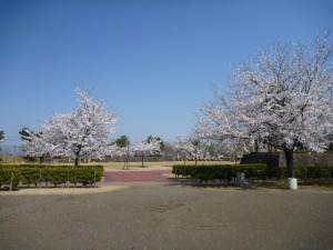 雄物川中央公園2